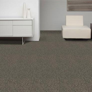 Collins & Aikman Carpet