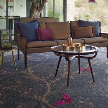 Woodward Grosvenor Carpet