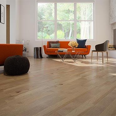 Family Room/Dens | Appalachian Flooring