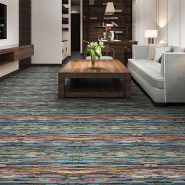 Family Room/Dens | Couristan Carpet