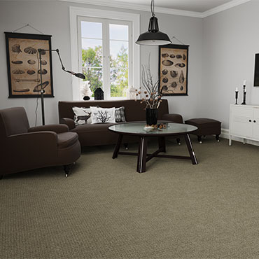Living Rooms | Dream Weaver Carpet