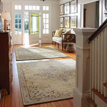 Foyers/Entry | Capel Rugs