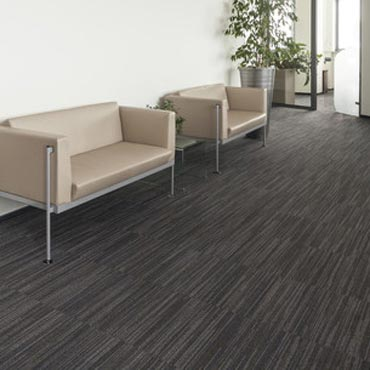 Fortune Contract Carpet -