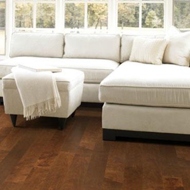 Robina Hardwood Floors -