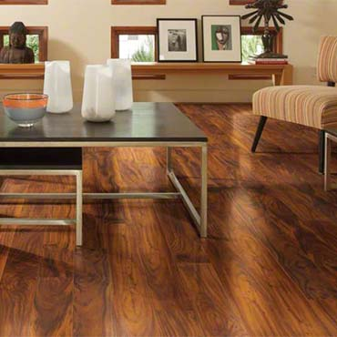 Shaw Laminate Flooring | Family Room/Dens - 3708