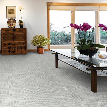 Couristan Carpet -