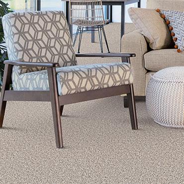 Dream Weaver Carpet  | Family Room/Dens - 6007