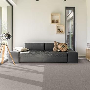 Dream Weaver Carpet  | Family Room/Dens - 6011