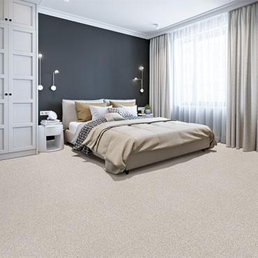 Dream Weaver Carpet  | Bedrooms - 6026