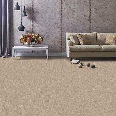 Phenix Carpet  | Living Rooms