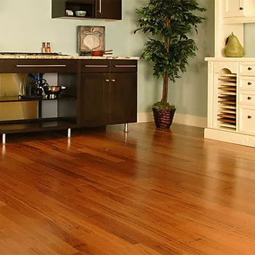 Forest Accents Laminate Flooring -