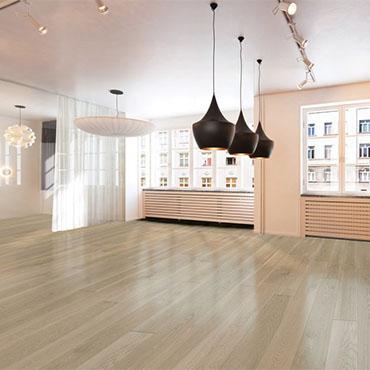 Arte Mundi - Bauhaus Collection -