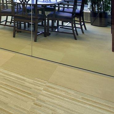 Fuzion Flooring Carpet Tile -