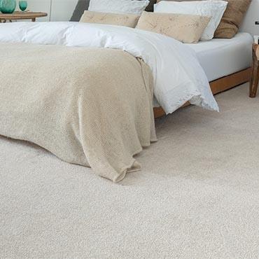 Balta Carpeting -