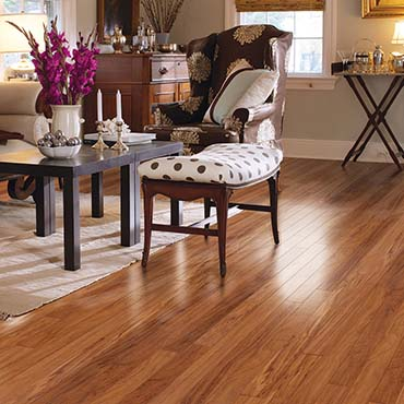 Mannington Laminate Flooring | Living Rooms - 3050