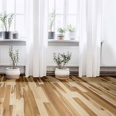 Viking Hardwood Flooring | Living Rooms - 6744