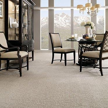 Anderson Tuftex Carpet