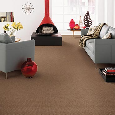 Anderson Tuftex Carpet - Battle Creek MI