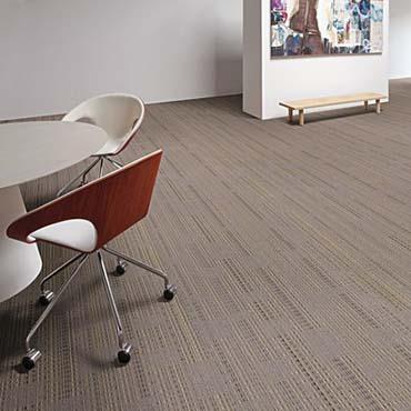 Tandus Carpet