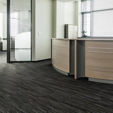 Pentz Commercial Carpet