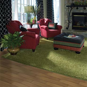 Masland Rugs | Family Room/Dens