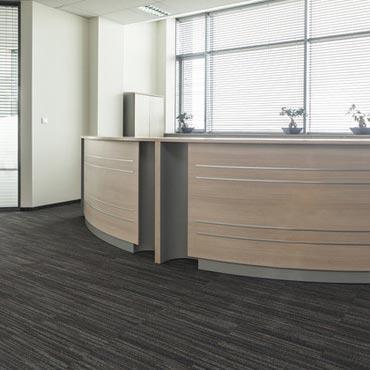 Kraus Contract Carpet