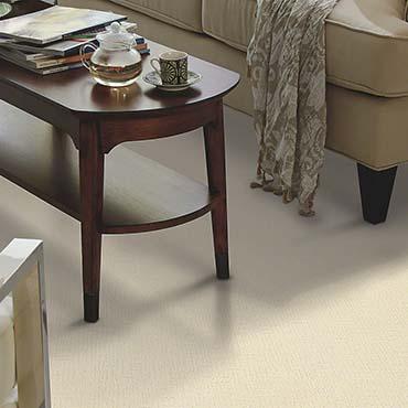 Shaw Carpet - Dalton GA