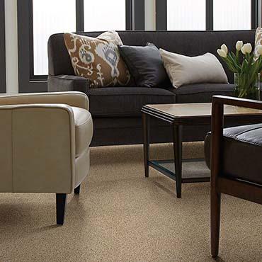 Shaw Carpet - Winder GA