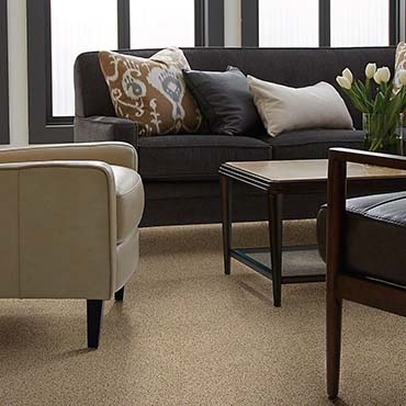 Shaw Carpet - Jacksonville FL