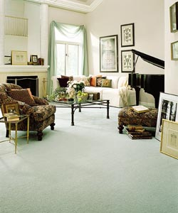 Bigelow®  Carpet